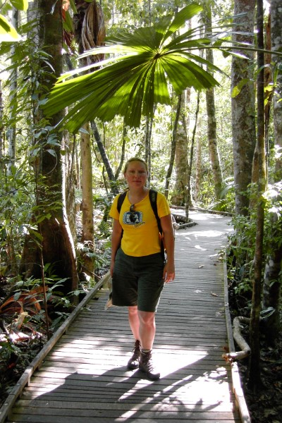 Wandeling Cape Tribulation